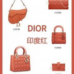 2020神仙色包包 印度红色dior包包